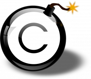 Copyright extends to all images on the internet